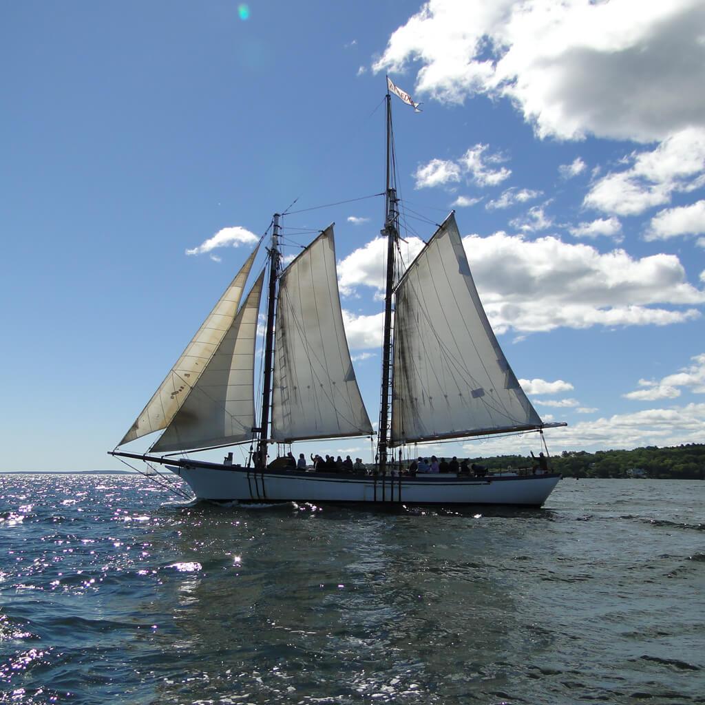 camden-windjammer-day-sail-3